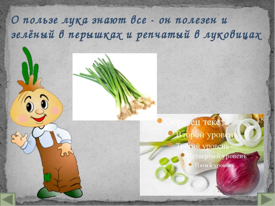 О пользе лука знают все - он полезен и зелёный в перышках и репчатый в лукови...