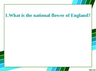 1.What is the national flower of England?