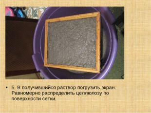 5. В получившийся раствор погрузить экран. Равномерно распределить целлюлозу