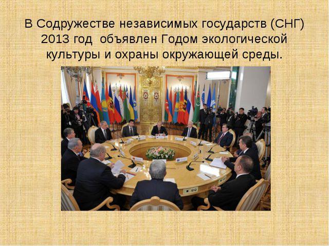 В Содружестве независимых государств (СНГ) 2013 год объявлен Годом экологиче...