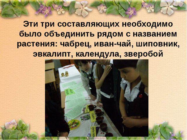 Эти три составляющих необходимо было объединить рядом с названием растения: ч...