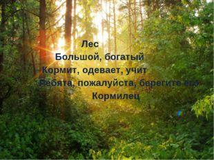 Лес Большой, богатый Кормит, одевает, учит Ребята, пожалуйста, берегите его
