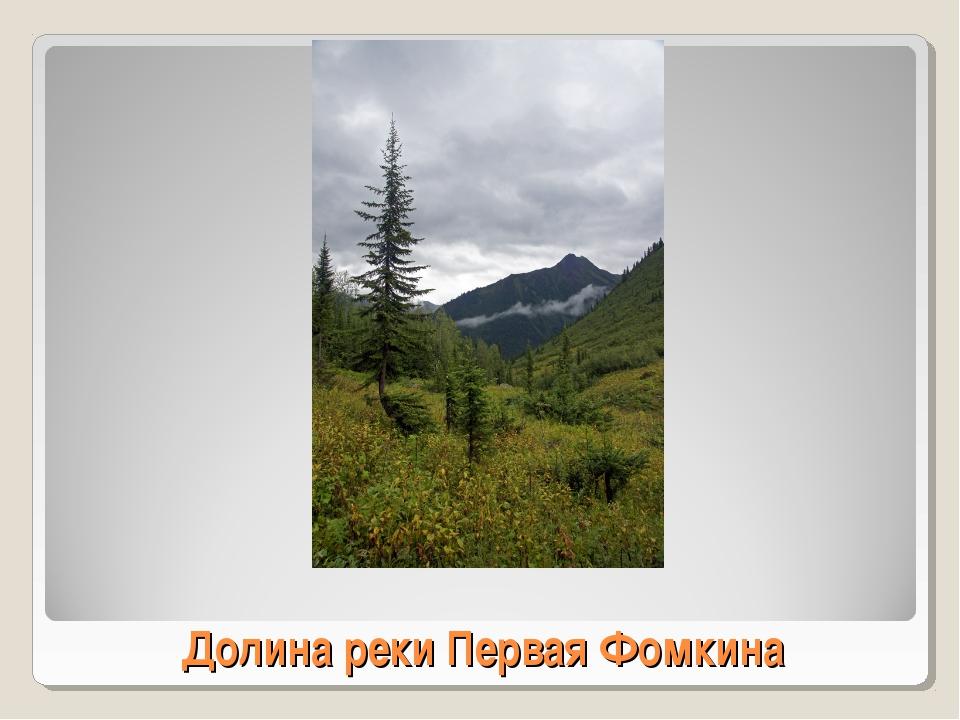 Долина реки Первая Фомкина