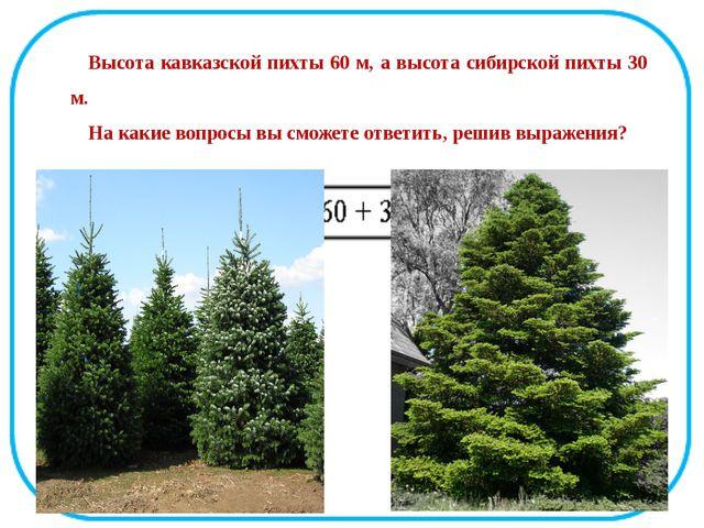 Высота кавказской пихты 60 м, а высота сибирской пихты 30 м. На какие вопросы...