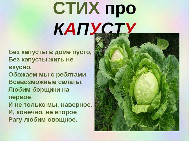 СТИХ про КАПУСТУ Без капусты в доме пусто, Без капусты жить не вкусно. Обожае...