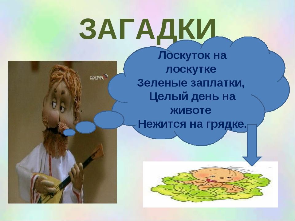 ЗАГАДКИ Лоскуток на лоскутке Зеленые заплатки, Целый день на животе Нежится н...