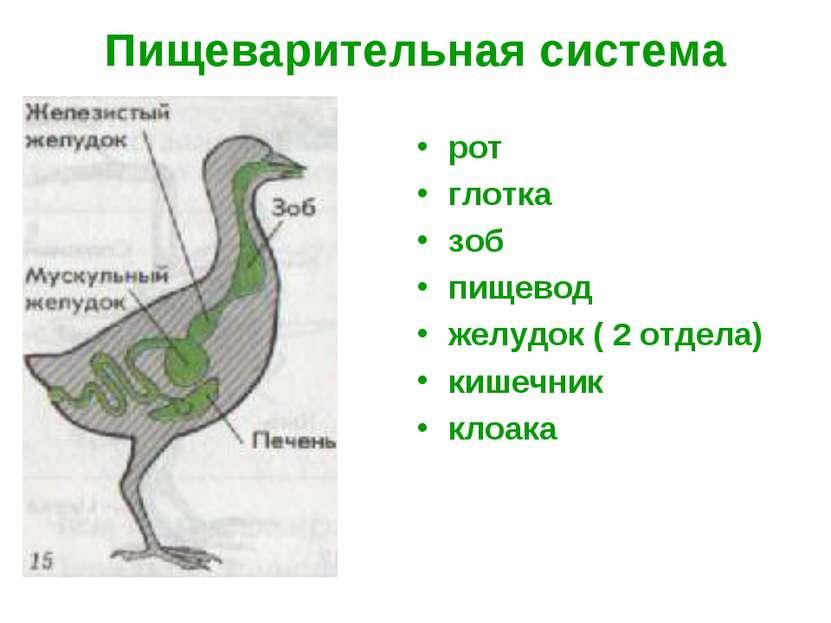 http://bigslide.ru/images/9/8954/831/img10.jpg