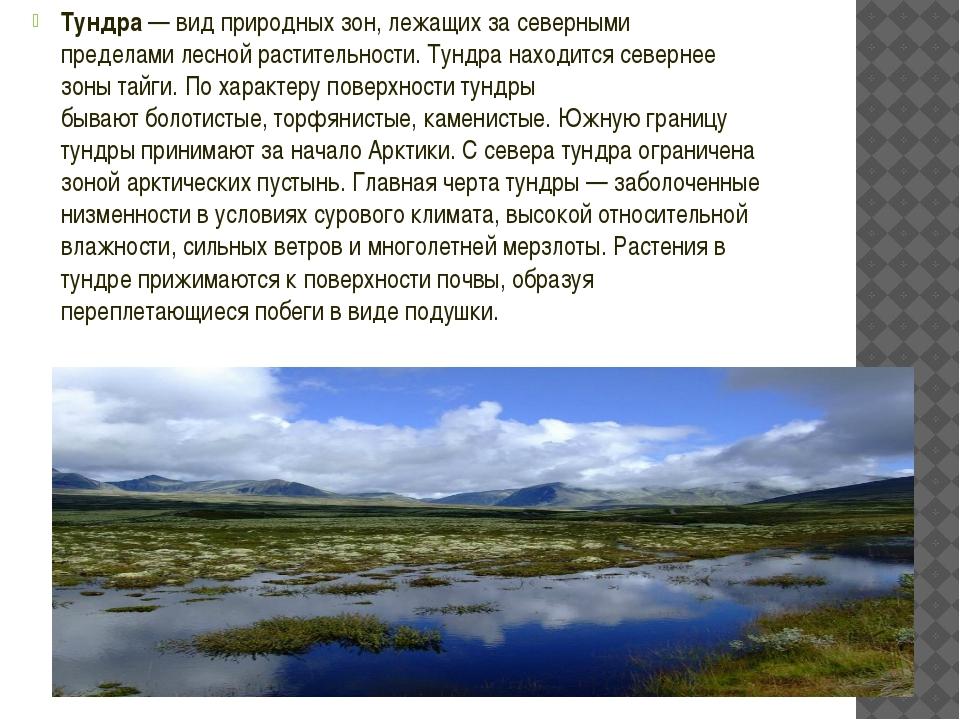 Тундра— видприродных зон, лежащих за северными пределамилеснойрастительно...