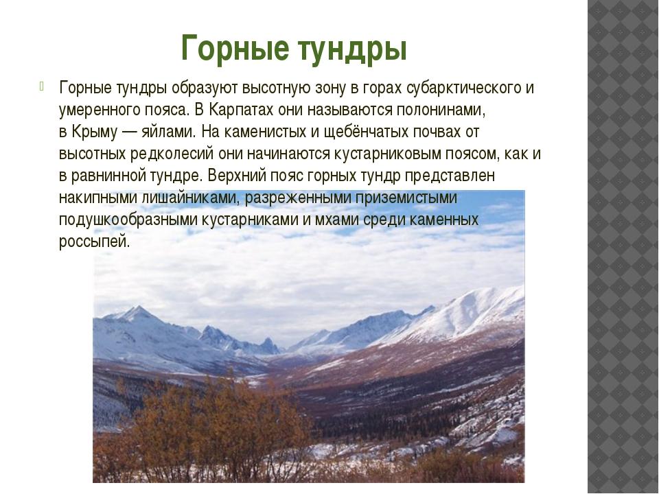 Горные тундры Горные тундры образуют высотную зону в горах субарктического и...