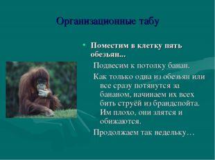 Организационные табу Поместим в клетку пять обезьян... Подвесим к потолку бан