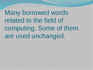 Many borrowed words related to the field of computing. Some of them are used