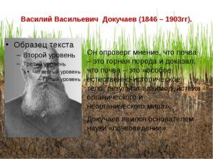 Василий Васильевич Докучаев (1846 – 1903гг). Он опроверг мнение, что почва –