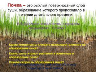 Почва – это рыхлый поверхностный слой суши, образование которого происходило