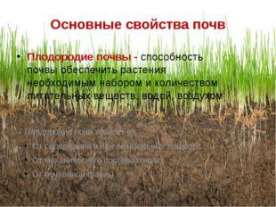 Основные свойства почв Плодородие почвы - способность почвы обеспечить растен