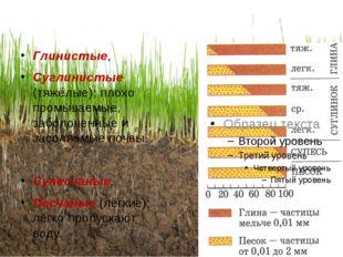 Механический состав почв Глинистые, Суглинистые (тяжёлые); плохо промываемые,