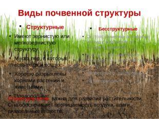 Виды почвенной структуры Структурные Имеют зернистую или мелкозернистую струк