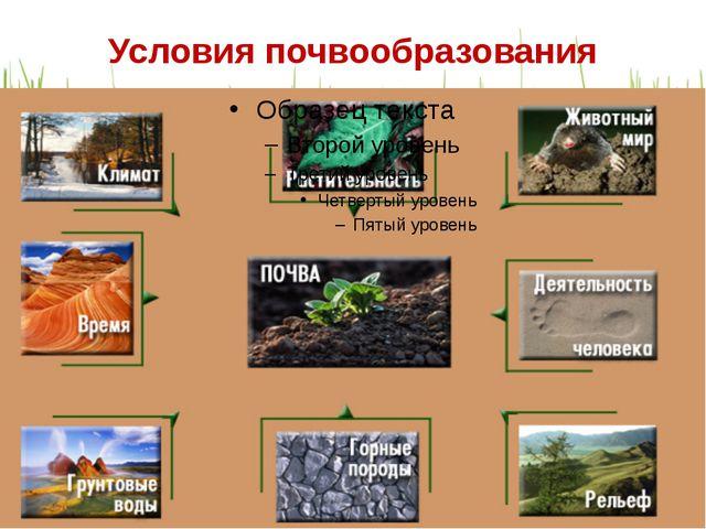 Условия почвообразования