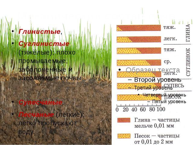 Механический состав почв Глинистые, Суглинистые (тяжёлые); плохо промываемые,...