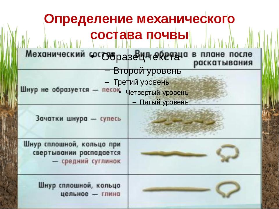 Определение механического состава почвы
