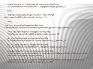 бурый медведь http://go4.imgsmail.ru/imgpreview?key=http%3A//www.kronoki.ru/u