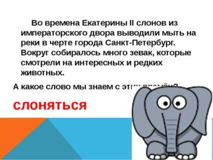 Во времена Екатерины II слонов из императорского двора выводили мыть на реки