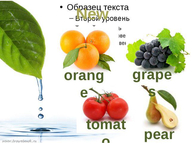 New words tomato grapes pear orange