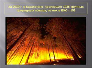 За 2010 г. в Казахстане произошло 1235 крупных природных пожара, из них в ВКО