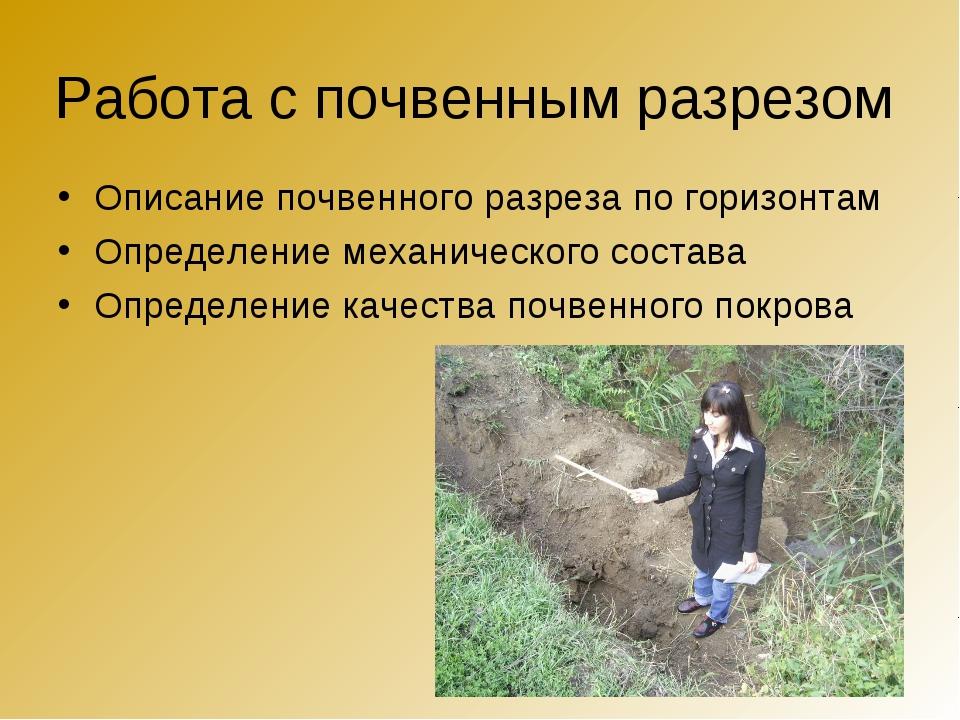 Работа с почвенным разрезом Описание почвенного разреза по горизонтам Определ...