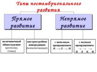 Типы постэмбрионального развития Прямое развитие Непрямое развитие неличиночн
