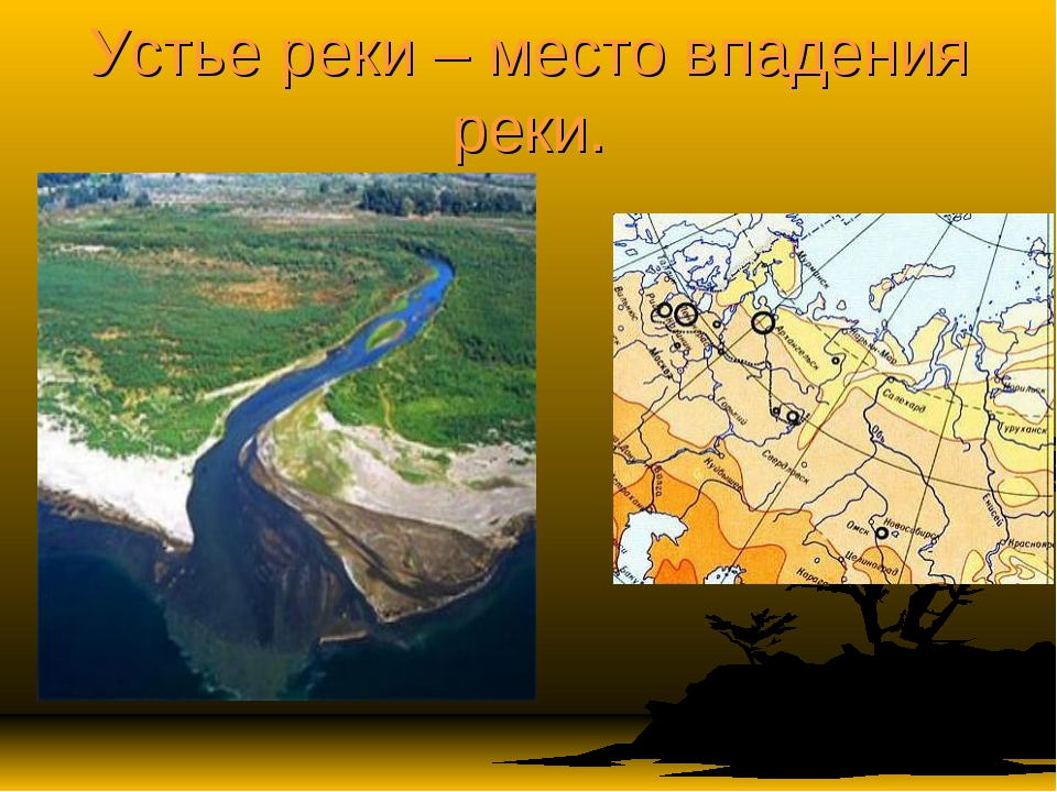 Устье реки – место впадения реки.