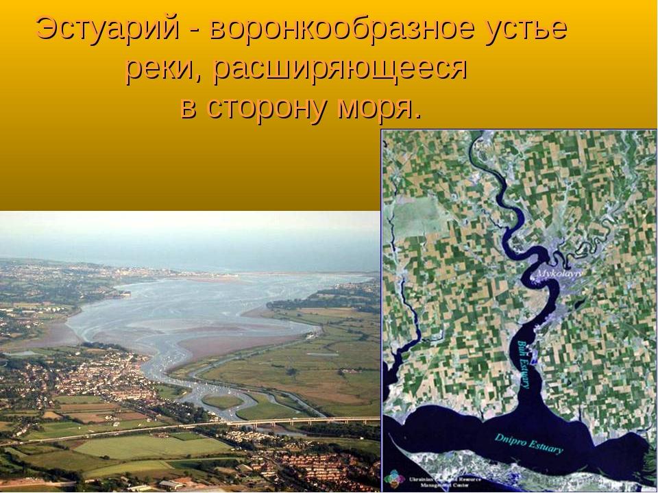 Эстуарий - воронкообразное устье реки, расширяющееся в сторону моря.
