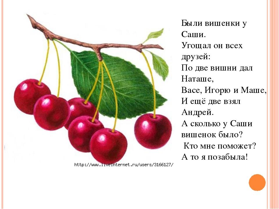 Были вишенки у Саши. Угощал он всех друзей: По две вишни дал Наташе, Васе, Иг...