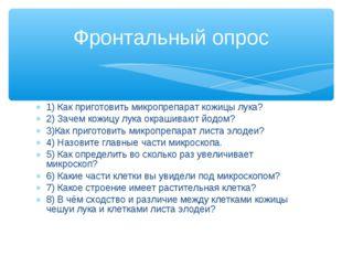 1) Как приготовить микропрепарат кожицы лука? 2) Зачем кожицу лука окрашивают