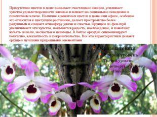 Присутствие цветов в доме вызывает счастливые эмоции, усиливает чувство удовл