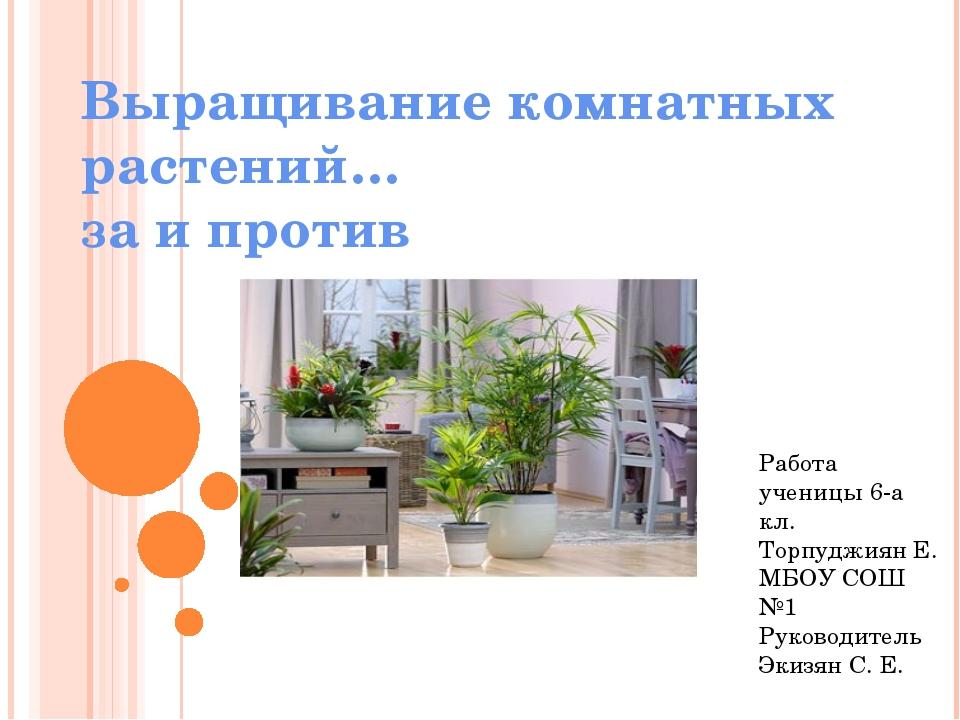 Выращивание комнатных растений… за и против Работа ученицы 6-а кл. Торпуджиян...