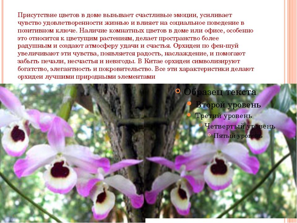 Присутствие цветов в доме вызывает счастливые эмоции, усиливает чувство удовл...