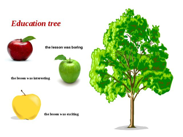Education tree the lesson was boring the lesson was interesting the lesson wa...