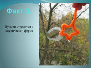 Факт 3. Пузыри стремятся к сферической форме
