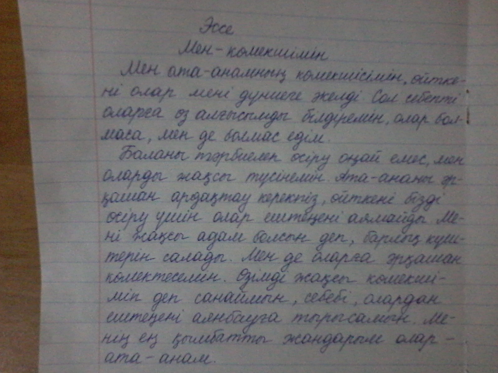 Реферат история казахского языка 6653
