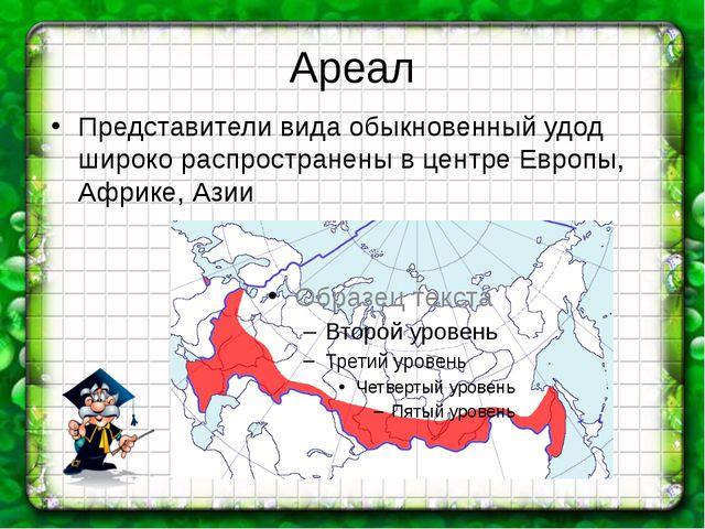Ареал Представители вида обыкновенный удод широко распространены в центре Евр...