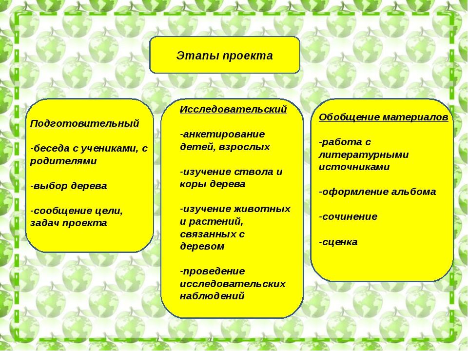 Этапы проекта Подготовительный -беседа с учениками, с родителями -выбор дерев...