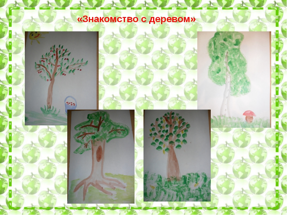 «Знакомство с деревом»