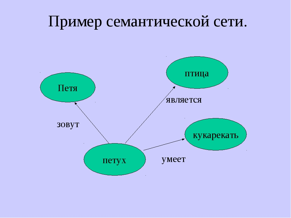 Пример семантической сети. Петя петух птица кукарекать зовут является умеет