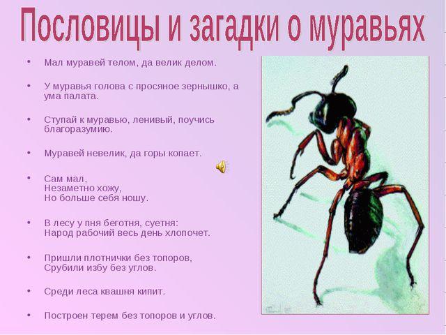 Мал муравей телом, да велик делом. У муравья голова с просяное зернышко, а у...