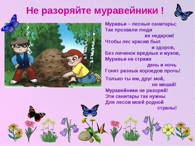 Не разоряйте муравейники ! Муравьи – лесные санитары; Так прозвали люди их не...