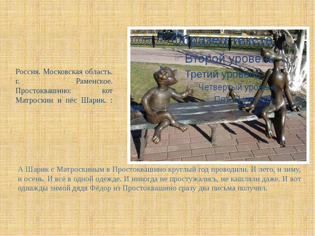 Россия. Московская область. г. Раменское. Простоквашино: кот Матроскин и пёс...