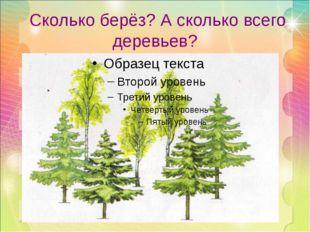 Сколько берёз? А сколько всего деревьев?