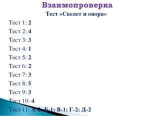 Тест «Скелет и опора» Тест 1: 2 Тест 2: 4 Тест 3: 3 Тест 4: 1 Тест 5: 2 Тест