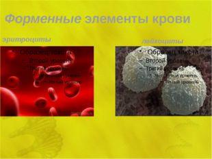 Форменные элементы крови эритроциты лейкоциты