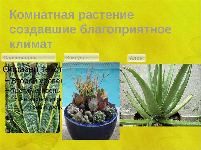 Комнатная растение создавшие благоприятное климат Сансевиерия Кактусы Алоэ